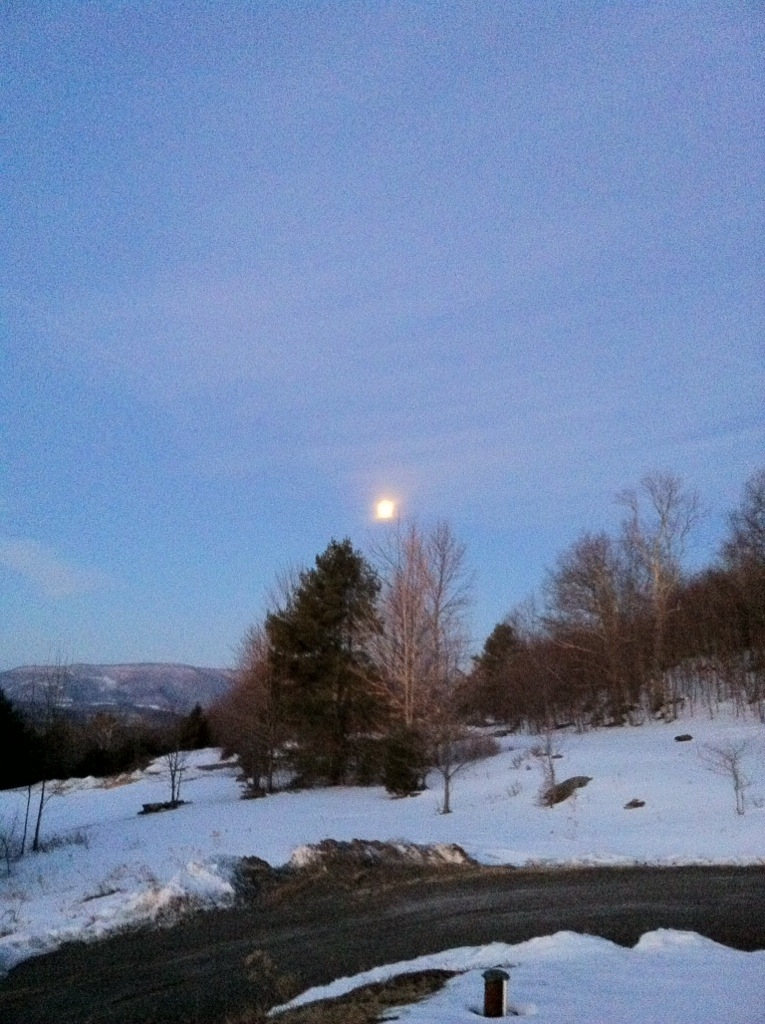 The Moon finally going down only a little while ago. [Photo by me, 2014.]