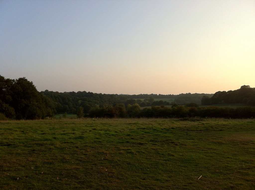 View of a section of Trent Park, London, at dusk. [Photo by me, 2014]