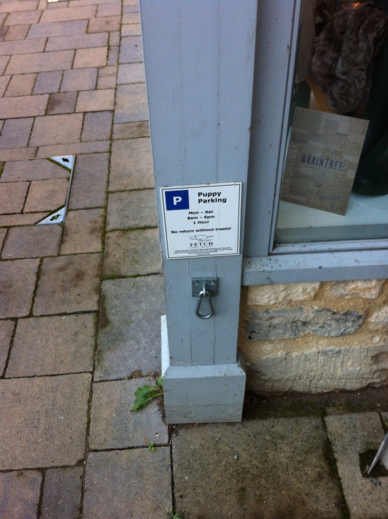 Puppy parking place, outside a shop in Bradford-on-Avon, Wiltshire. [Photo by me, 2014.]