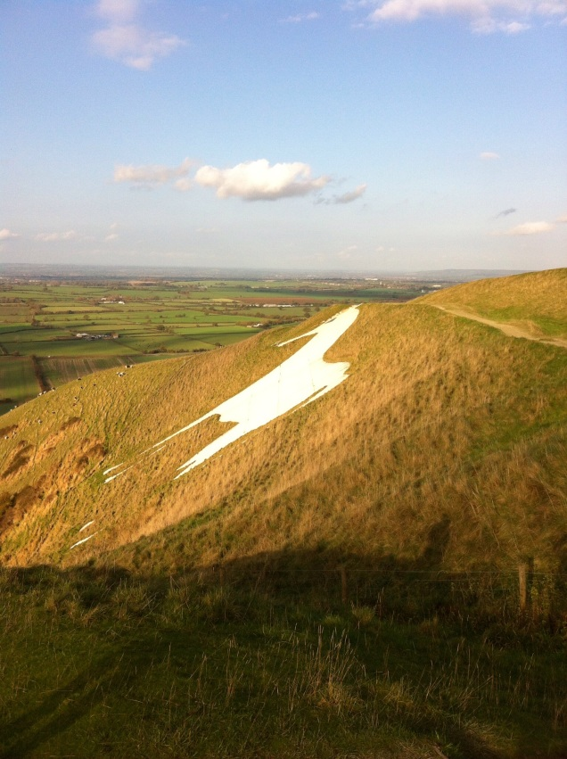 Westbury White Horse [Photo by me, 2014].