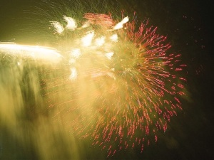 Free Stock Photo: Colorful fireworks in the night sky.