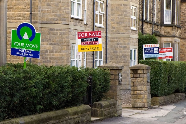 Free Stock Photo: Home sale signs along a street.
