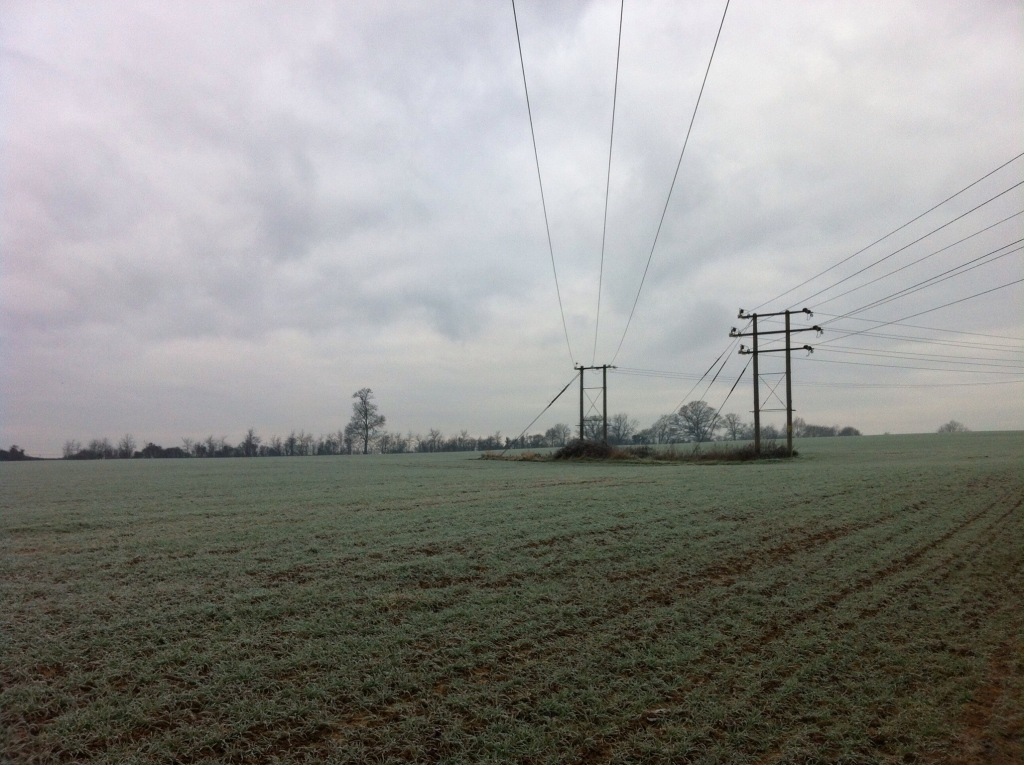 Frosty Wiltshire farmland, not far from our house. Photographed earlier in the week. [Photo by me, 2014.]