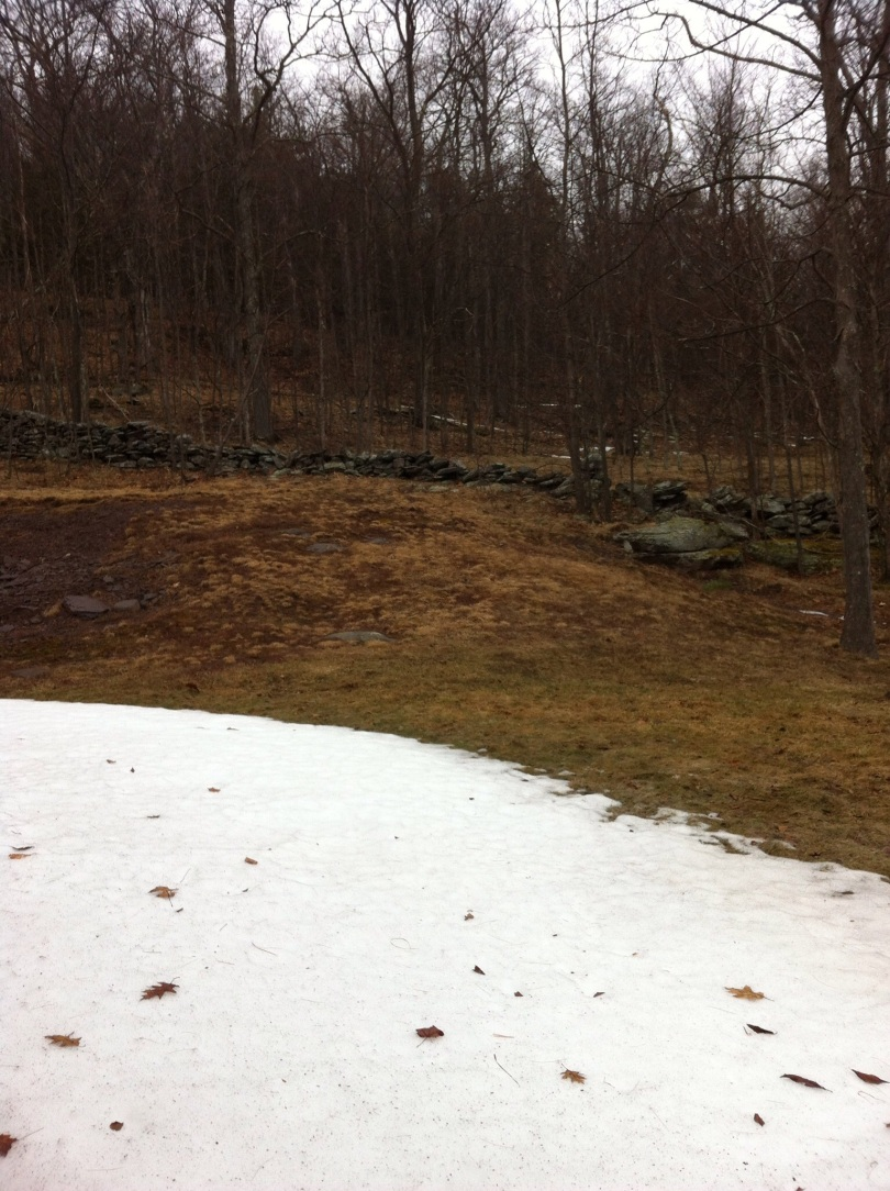 Still some snow piled around. Catskills. [Photo by me, 2015.]