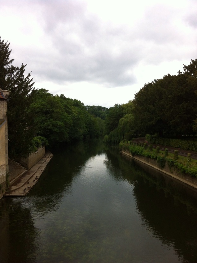 River Avon, Bradford-on-Avon, Wiltshire. [Photo by me, 14 June 2015.]