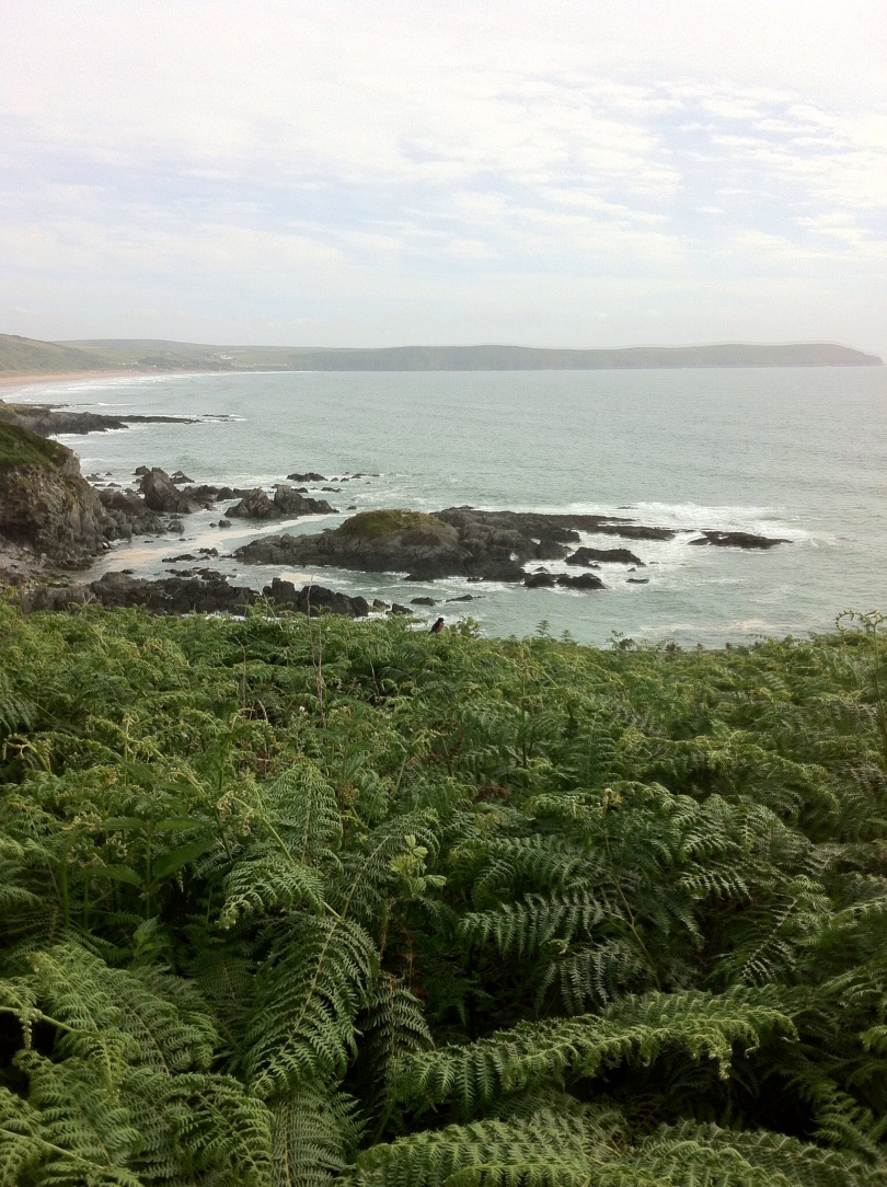 Devon coast. [Photo by me, 2015.]