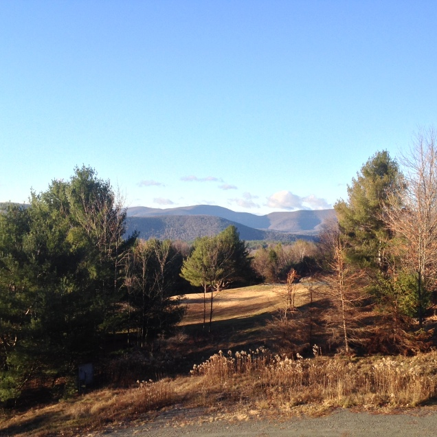 Catskills view. [Photo by me, 2015.]