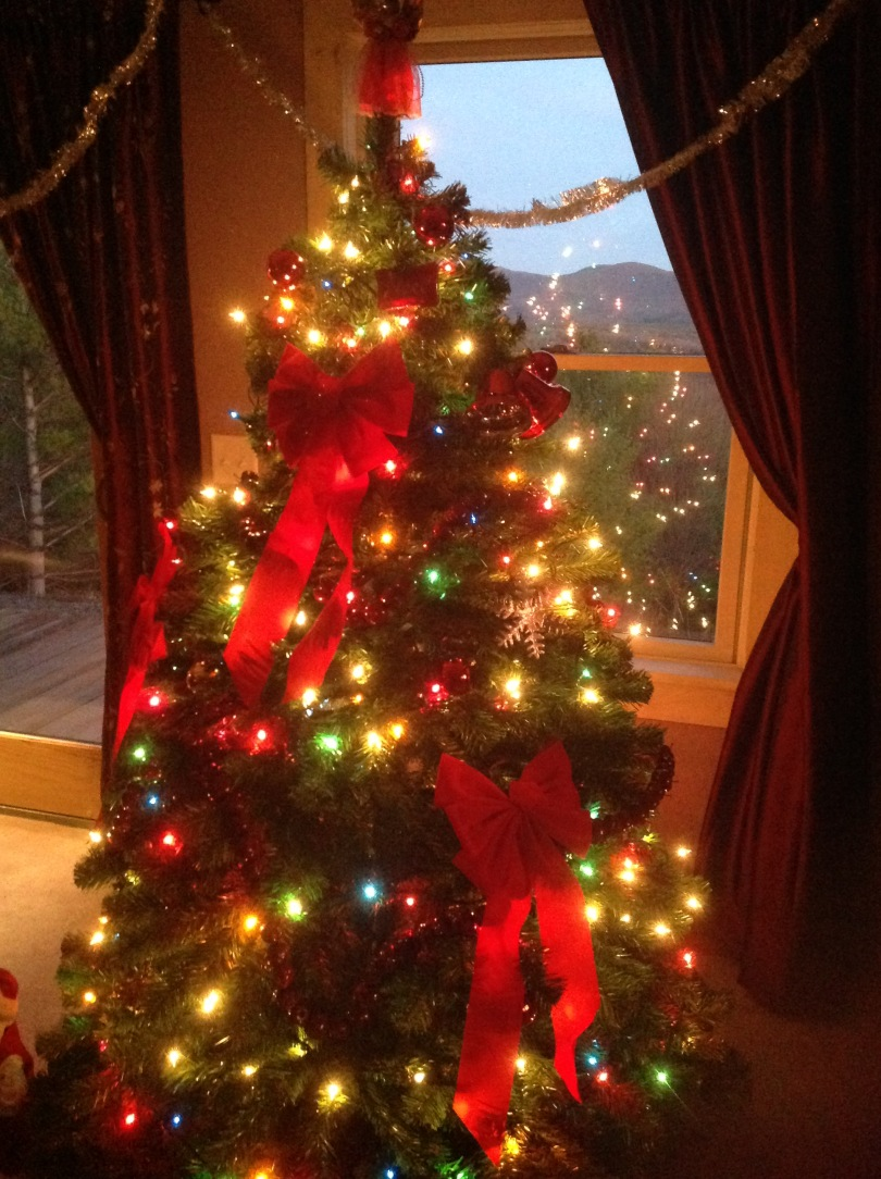 Our Christmas tree. [Photo by me, 2015.]