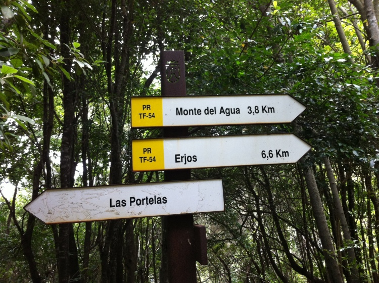 Which way? Tenerife, Canary Islands, Spain. [Photo by me, 2016.]