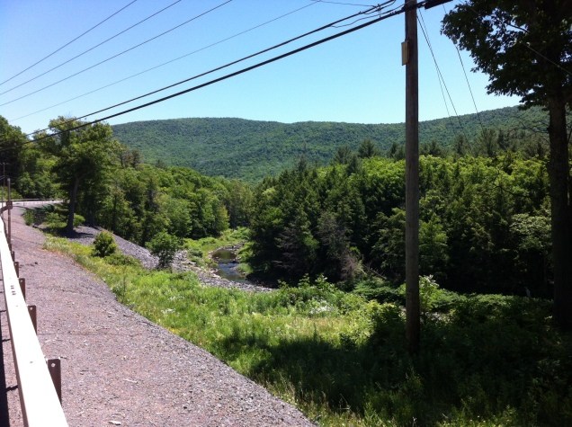 A view down to the Batavia Kill, Catskills. [Photo by me, 2016.]