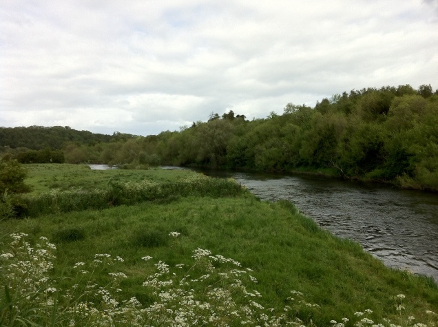 View of the River Boyne, Republic of Ireland. [Photo by me, 2015.]