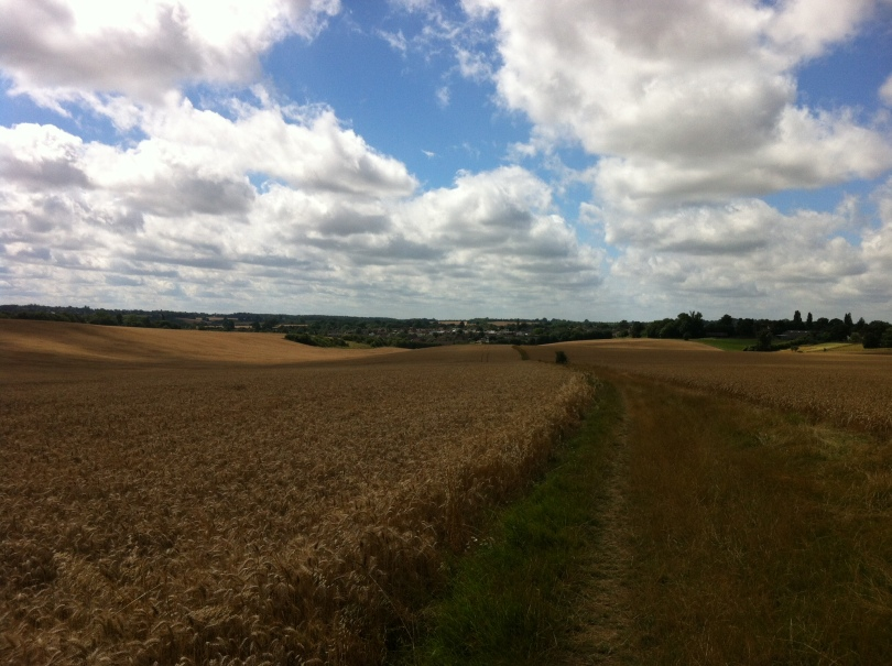 Our Hertfordshire village, seen from a distance back in August. [Photo by me, 2016.]