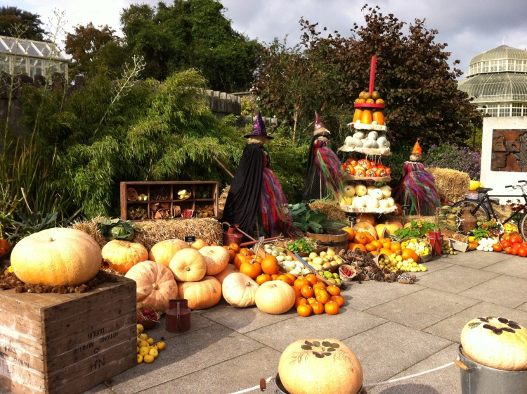 The Halloween display in the National Botanic Gardens, Dublin. [Photo by me, October 2016.]