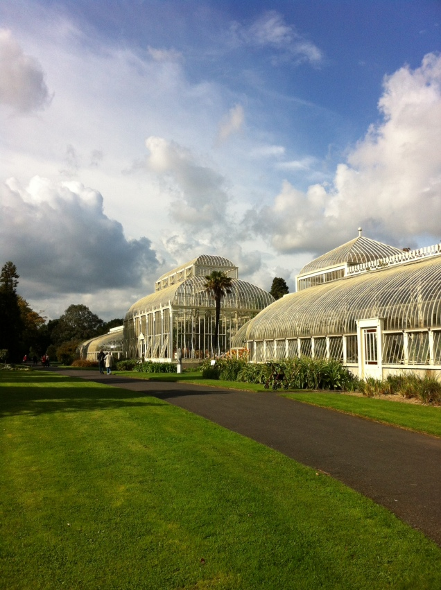 Greenhouses, National Botanic Gardens, Dublin. [Photo by me, October 2016.]
