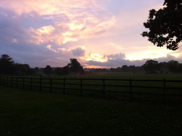 Sunset. Hertfordshire, England. [Photo by me, 2016.]
